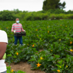 Grants to New Jersey Minority Agricultural Producers to Implement Resource Conservation Strategies