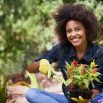 Best Grants for Forestry, Farming, and Food Products